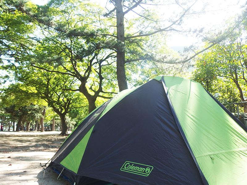 初めて買うソロキャンプテントは何がいい?コールマンツーリングドームSTが良い理由