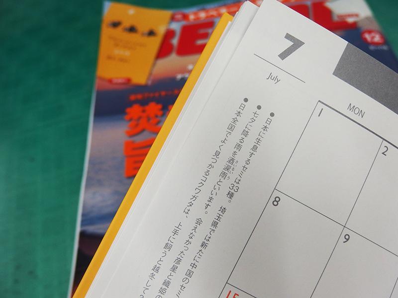 スケジュール帳 BE-PAL 付録 手帳