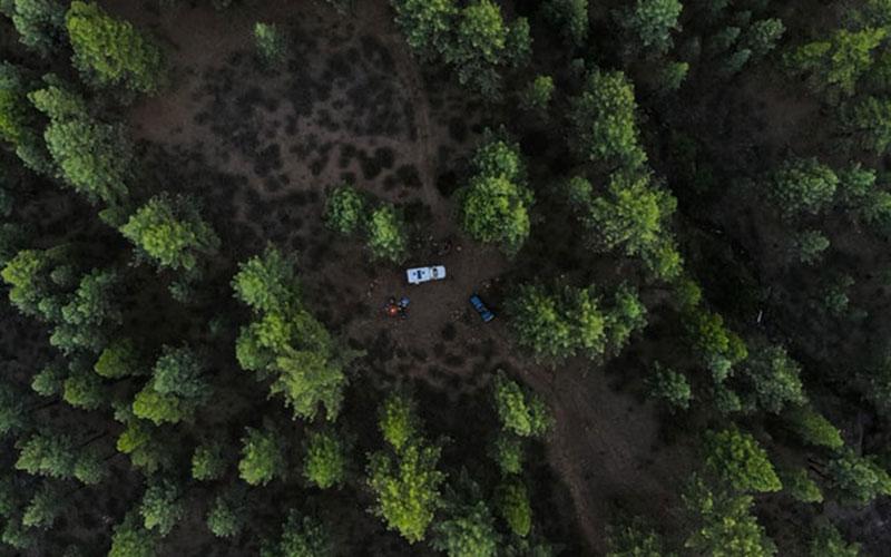 キャンプ場に潜む危険 回避の仕方と対策