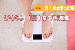 1日1食ダイエット 減量の記録