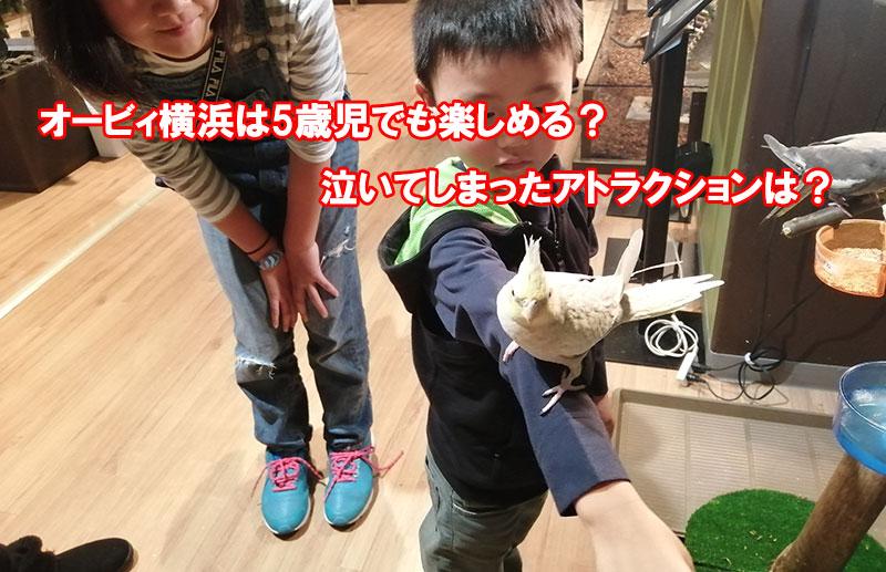 オービィ横浜 5歳児でも楽しめる?どんな感じなの?