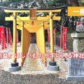 茨城 黄金の鳥居の神社は?