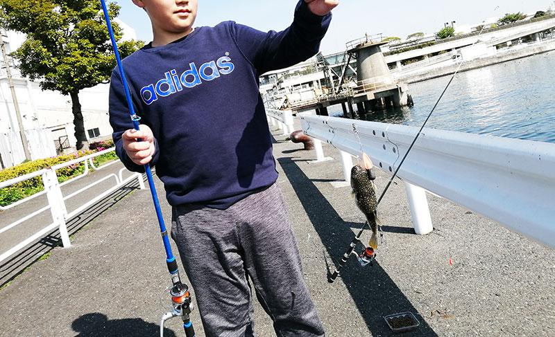 初心者でも魚が釣れる場所はどこ?神奈川 釣り場