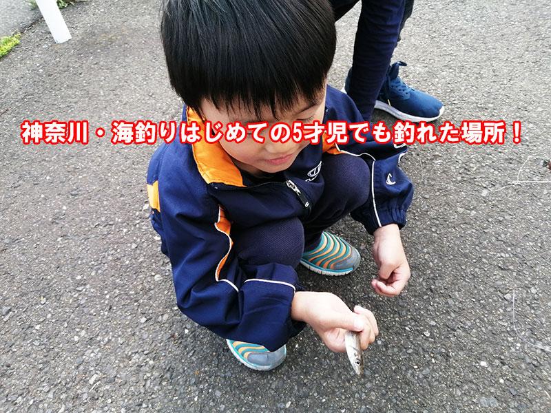 神奈川 横浜 釣り未経験でも釣れる場所は?