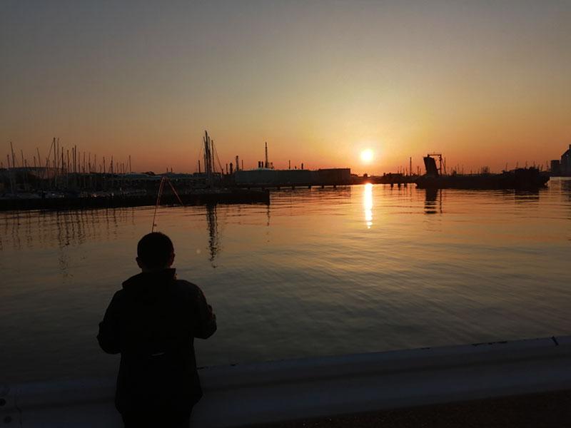根岸港 どの辺で魚は釣れる?