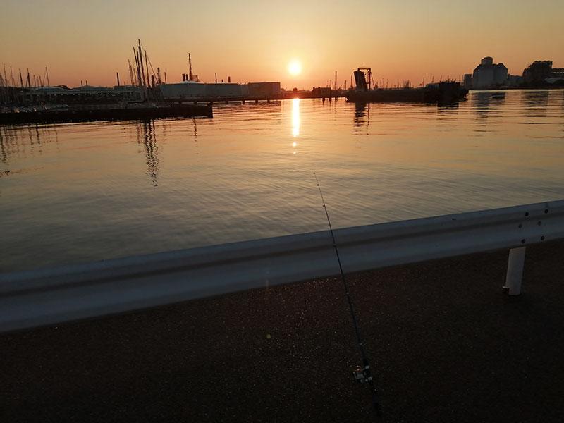 はじめての海釣り 神奈川 魚が釣れる場所はどこ?