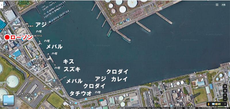 横浜 根岸港(湾)では何が釣れる?