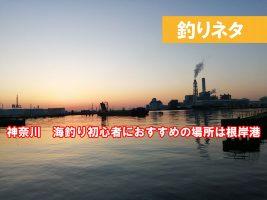 神奈川 横浜 釣り未初心者 おすすめの釣り場は?