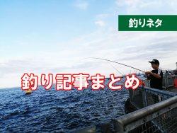子供と海釣り はじめる 準備するものは?
