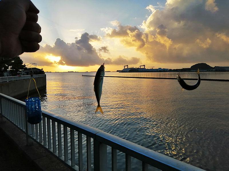 野島公園駅 アジが釣れるポイントはどこ?