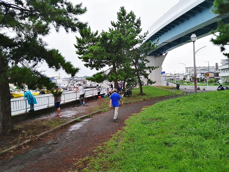 横浜市 アジが釣れる秘密の場所はある?