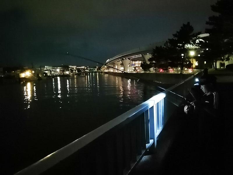 横浜で豆アジが釣れる場所はどこ?