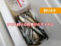 サビキ釣り 魚をたくさん釣る方法は?