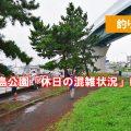 野島公園 アジのポイント 休日の混雑状況は?