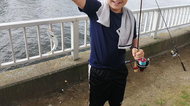 子供とサビキ釣り 釣り方は?