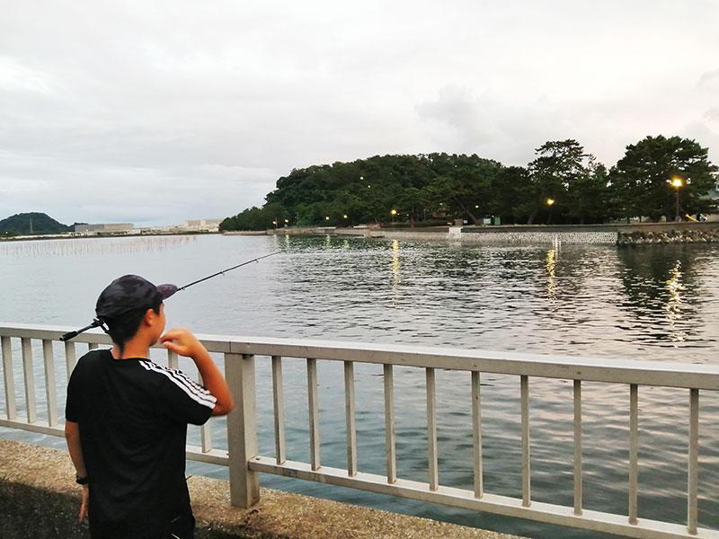 横浜 サビキでアジが釣れる場所は? 無料