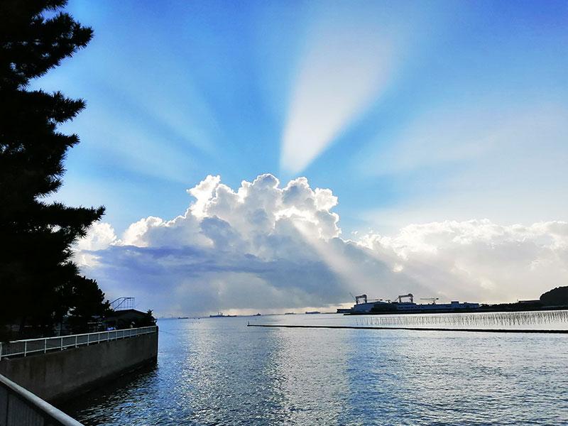 横浜でアジが釣れる場所はどこ?