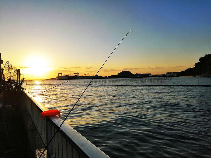 子供と海釣りをはじめる 横浜で釣れる場所は
