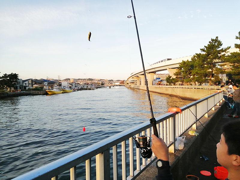 子供と釣りをやりたい 横浜でおすすめの釣りスポットはどこ?