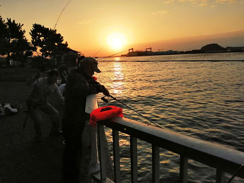 神奈川 簡単にアジが釣れる場所はどこ?