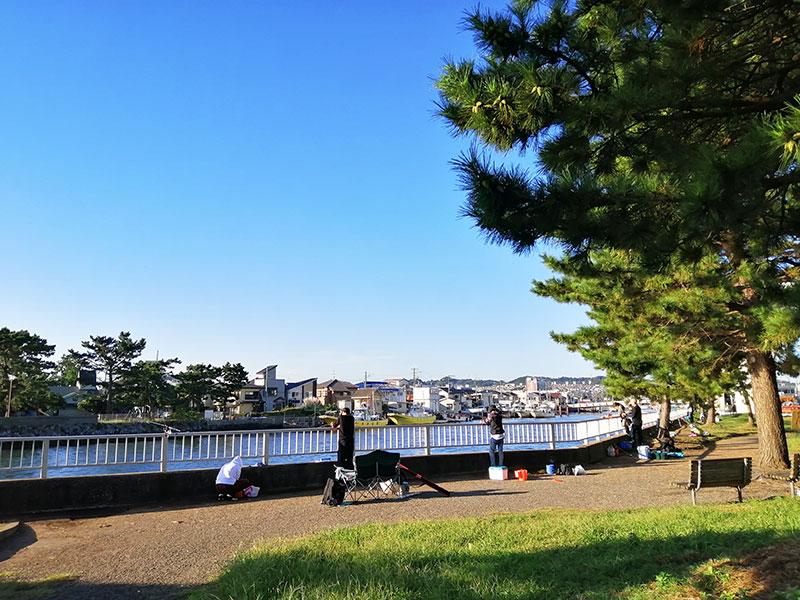 野島公園水路 アジは釣れる?ブログ