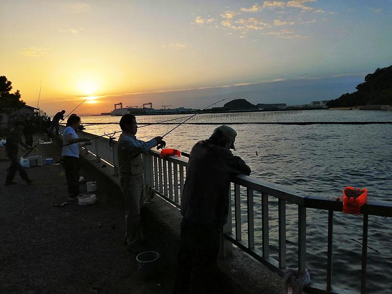 横浜 海釣り アジ釣り