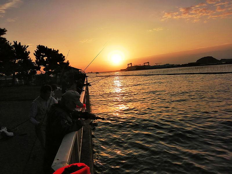 横浜でアジが簡単に釣れる場所はどこ?