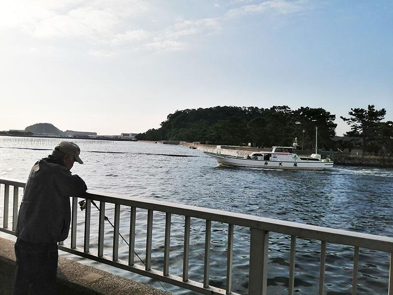 鯵釣り 神奈川横浜 どこが釣れる?