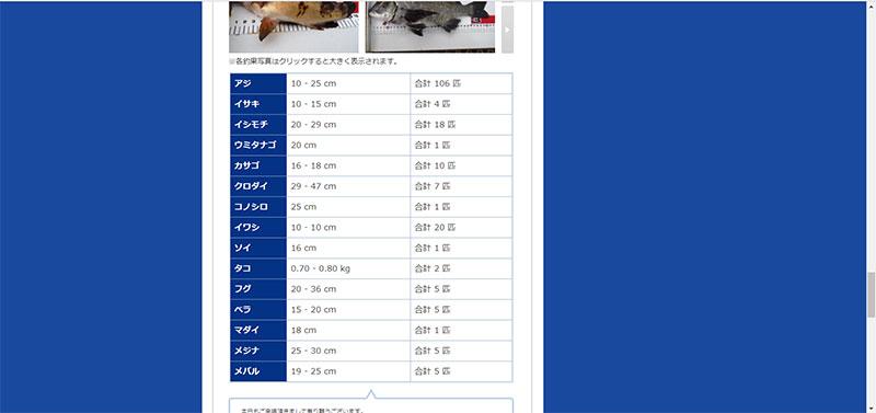 神奈川 寒い時期では何が釣れるの?横浜の釣り場の釣果情報