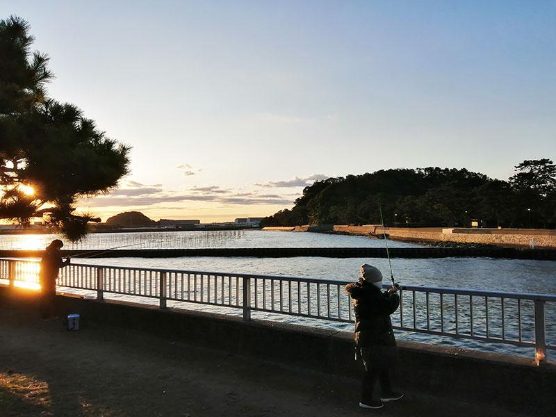 横浜で海釣り 1月 魚は釣れるの?