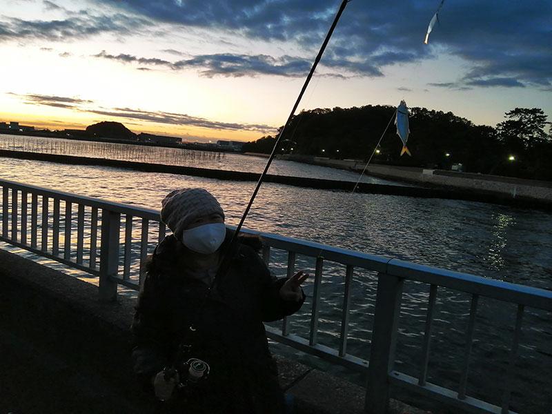 横浜 金沢八景 1月でも魚は釣れるの?