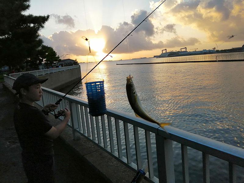 横浜 アジが釣れる場所はどこ?