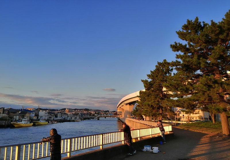 横浜市金沢区 1月でも釣れる魚はいる?
