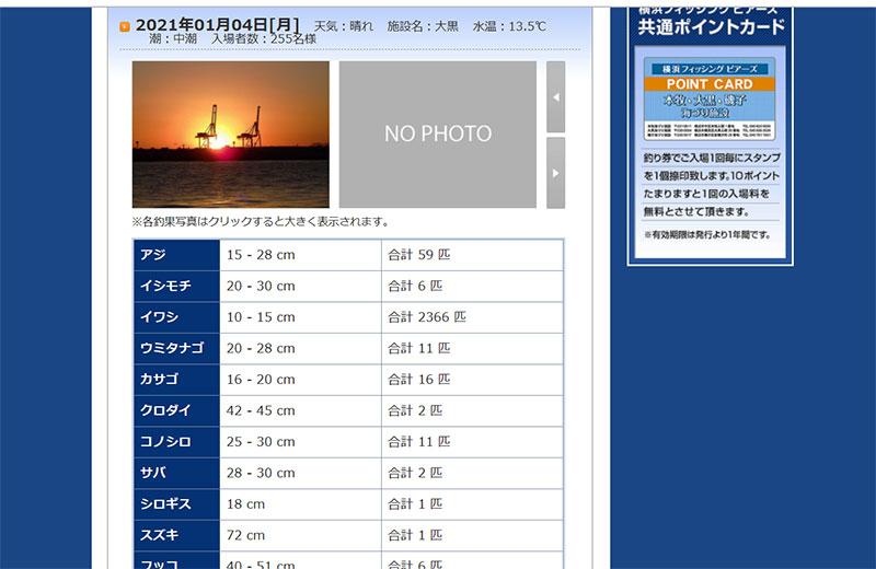 神奈川 横浜 冬でも釣れる魚は?