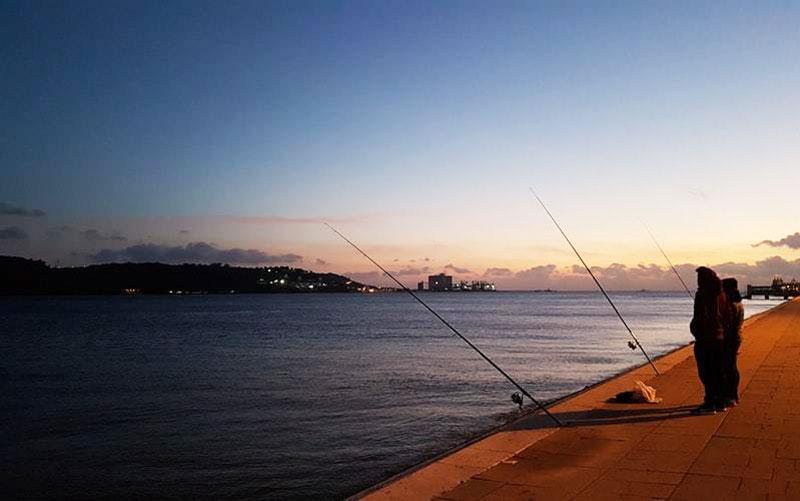 海釣り 未経験 たくさん釣るには?