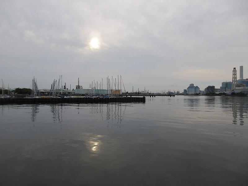 根岸港 魚が釣れる場所はどこ辺?